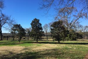 Beautiful Home Overlooking Pastures & Ponds in Abbeville, SC (15 of 74)