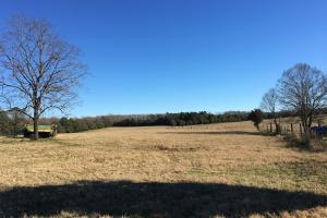 Beautiful Home Overlooking Pastures & Ponds in Abbeville, SC (12 of 74)