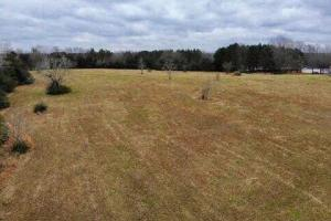 Madison 4 acre Homesite in Madison, MS (4 of 4)