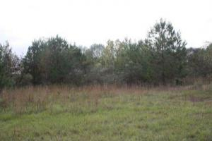 Pelahatchie 6 acre Homesite - Rankin County MS