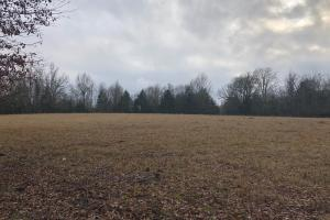 New Albany Investment Property - Union County MS