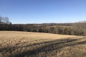 Loudon County Farm/Residential Development Tract in Loudon, TN (24 of 34)