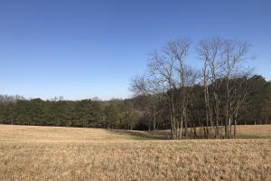Loudon County Farm/Residential Development Tract in Loudon, TN (28 of 34)