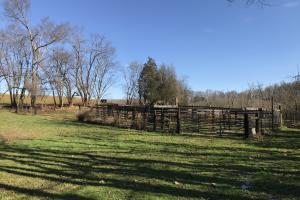 Loudon County Farm/Residential Development Tract in Loudon, TN (11 of 34)