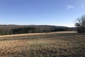 Loudon County Farm/Residential Development Tract in Loudon, TN (30 of 34)