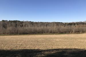 Loudon County Farm/Residential Development Tract in Loudon, TN (19 of 34)