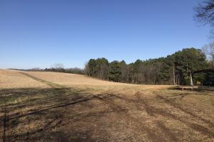 Loudon County Farm/Residential Development Tract in Loudon, TN (27 of 34)