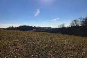 Loudon County Farm/Residential Development Tract in Loudon, TN (12 of 34)