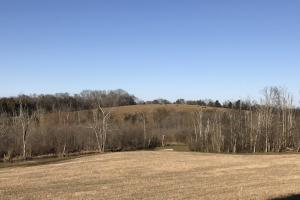 Loudon County Farm/Residential Development Tract in Loudon, TN (18 of 34)