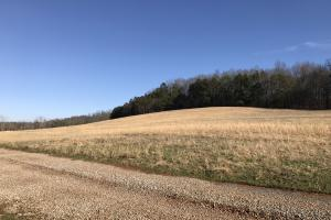 Loudon County Farm/Residential Development Tract in Loudon, TN (15 of 34)