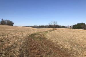 Loudon County Farm/Residential Development Tract in Loudon, TN (3 of 34)