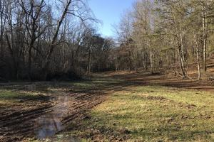 Loudon County Farm/Residential Development Tract in Loudon, TN (32 of 34)