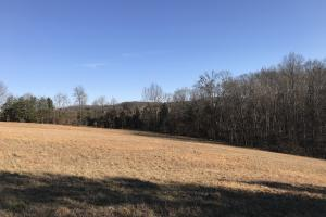 Loudon County Farm/Residential Development Tract in Loudon, TN (29 of 34)