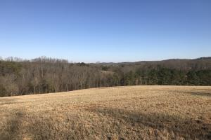 Loudon County Farm/Residential Development Tract in Loudon, TN (26 of 34)