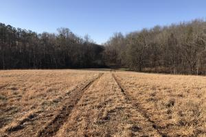 Loudon County Farm/Residential Development Tract in Loudon, TN (31 of 34)