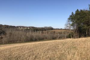Loudon County Farm/Residential Development Tract in Loudon, TN (25 of 34)