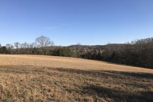 Loudon County Farm/Residential Development Tract in Loudon, TN (33 of 34)