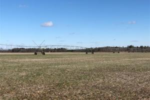 Red Springs Irrigated Farmland - Robeson County NC