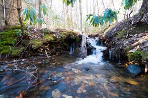 Many streams and waterfalls from the headwaters on this land,  Hidden Falls Meadow, Balsam Grove (78 of 82)