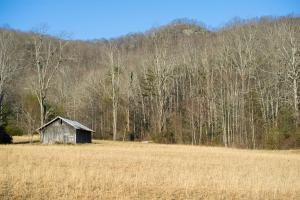 Suitable for Equestrian,  Hidden Falls Meadow, Balsam Grove  (36 of 82)