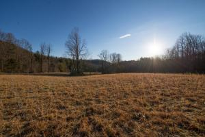 Wide and flat pasture,  Hidden Falls Meadow, Balsam Grove (31 of 82)