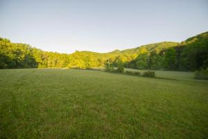 Largest of 3 pasture areas, Hidden Falls Meadow of Pisgah National Forest (19 of 82)