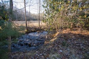 Larger section of the creek,  Hidden Falls Meadow, Balsam Grove (34 of 82)