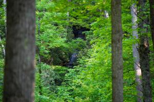 Large waterfall hidden in the forest, Hidden Falls Meadow of Pisgah National Forest (3 of 82)