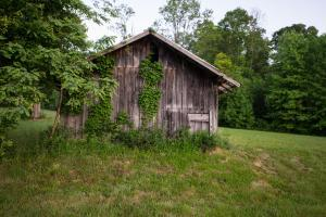 Small barn in pastures, Hidden Falls Meadow of Pisgah National Forest (13 of 82)