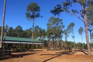 Evergreen Training Center and Equestrian Complex in Kershaw, SC (36 of 96)