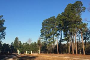 Evergreen Training Center and Equestrian Complex in Kershaw, SC (42 of 96)