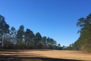 Evergreen Training Center and Equestrian Complex in Kershaw, SC (50 of 96)