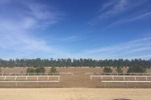 Evergreen Training Center and Equestrian Complex in Kershaw, SC (8 of 96)