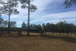 Evergreen Training Center and Equestrian Complex in Kershaw, SC (84 of 96)