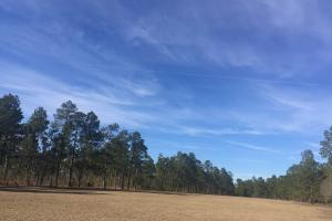 Evergreen Training Center and Equestrian Complex in Kershaw, SC (37 of 96)