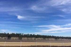 Evergreen Training Center and Equestrian Complex in Kershaw, SC (5 of 96)