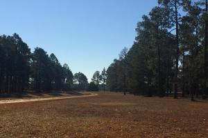 Evergreen Training Center and Equestrian Complex in Kershaw, SC (15 of 96)
