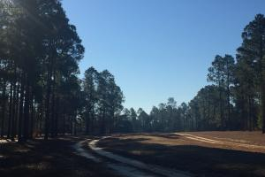 Evergreen Training Center and Equestrian Complex in Kershaw, SC (40 of 96)