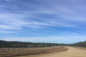 Evergreen Training Center and Equestrian Complex in Kershaw, SC (89 of 96)