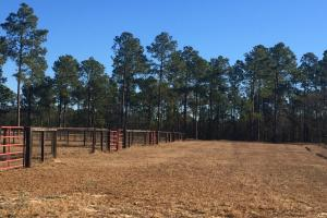 Evergreen Training Center and Equestrian Complex in Kershaw, SC (59 of 96)