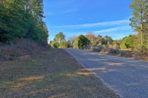 Mt. Zion Road Tract in Clarke, AL (2 of 3)