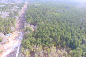 Shaw Highway 57+/- Acres in Pender, NC (9 of 13)