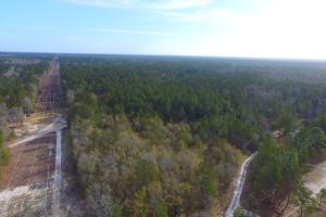 Shaw Highway 57+/- Acres - Pender County, NC