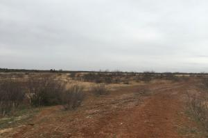 Hunting, Fishing and Cattle Place  in Cottle, TX (5 of 5)