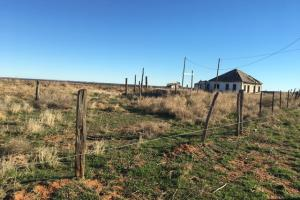 Cattle and Quail Property in Cottle, TX (5 of 6)