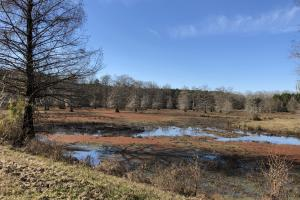 Pearl River Retreat Lot 16