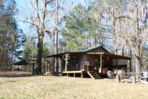 The Pinchony Creek Farm in Lowndes, AL (16 of 31)