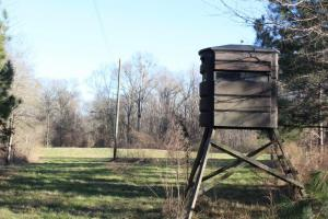 The Pinchony Creek Farm in Lowndes, AL (25 of 31)