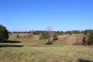 The Pinchony Creek Farm in Lowndes, AL (19 of 31)