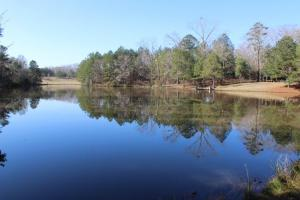 The Pinchony Creek Farm in Lowndes, AL (12 of 31)